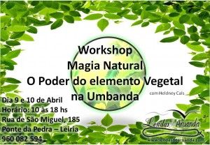Workshop Magia Natural